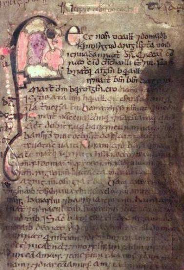 Book_of_Leinster,_folio_53